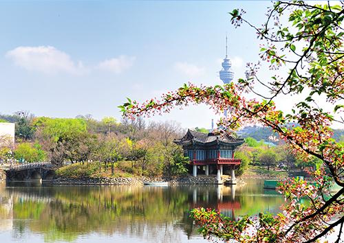 두류공원 사진